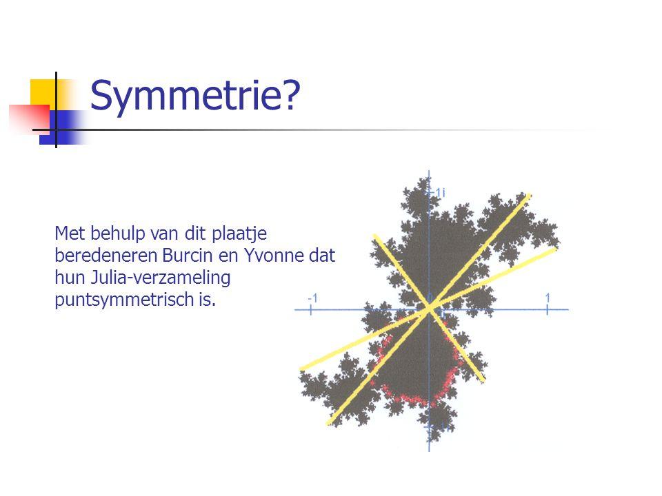 Symmetrie? Met behulp van dit plaatje beredeneren Burcin en Yvonne dat hun Julia-verzameling puntsymmetrisch is.