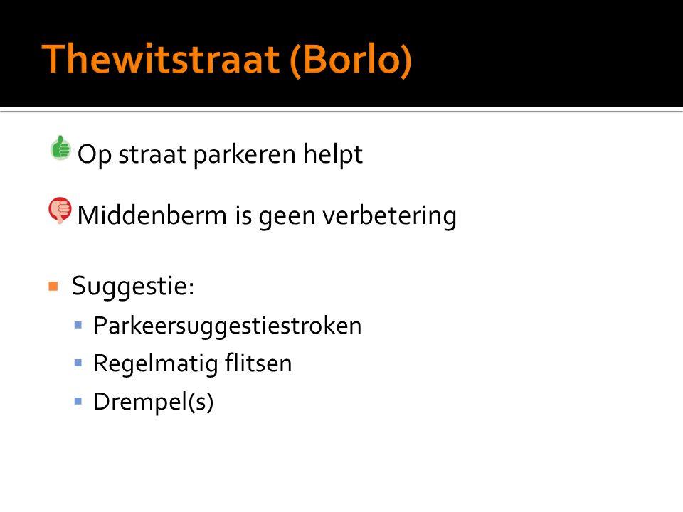 Op straat parkeren helpt Middenberm is geen verbetering  Suggestie:  Parkeersuggestiestroken  Regelmatig flitsen  Drempel(s)