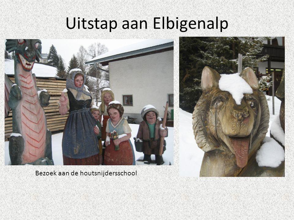 Uitstap aan Elbigenalp Bezoek aan de houtsnijdersschool