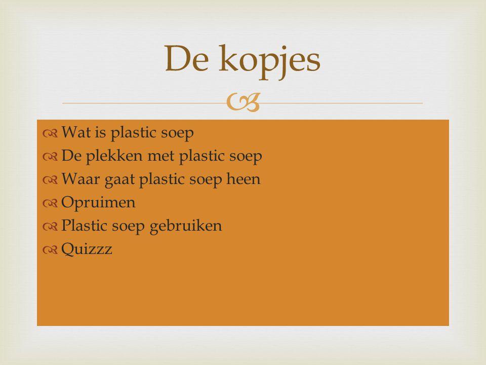  Plastic soep is het afval in de zee.