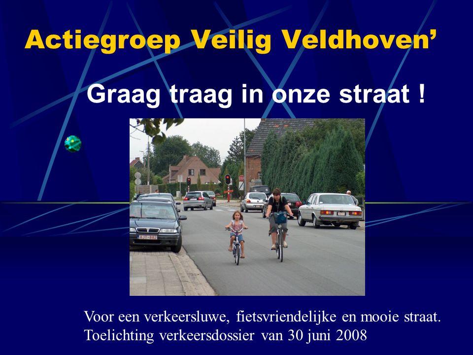 Actiegroep Veilig Veldhoven' Graag traag in onze straat ! Voor een verkeersluwe, fietsvriendelijke en mooie straat. Toelichting verkeersdossier van 30