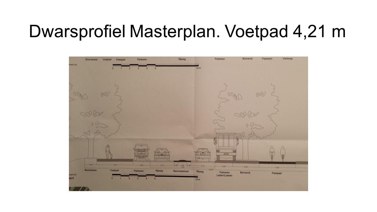 Dwarsprofiel Masterplan. Voetpad 4,21 m