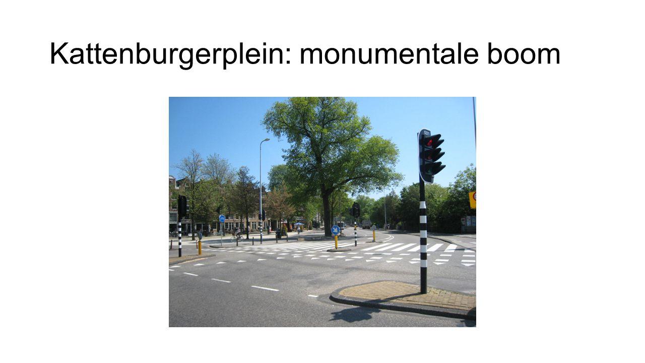 Kattenburgerplein: monumentale boom