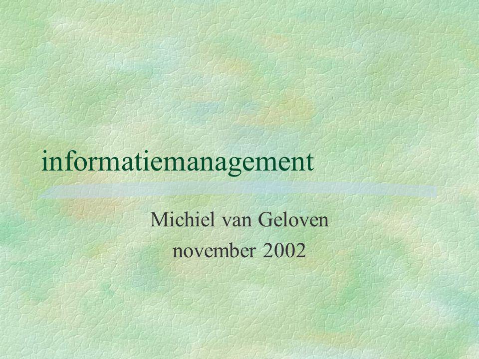 informatiemanagement Michiel van Geloven november 2002