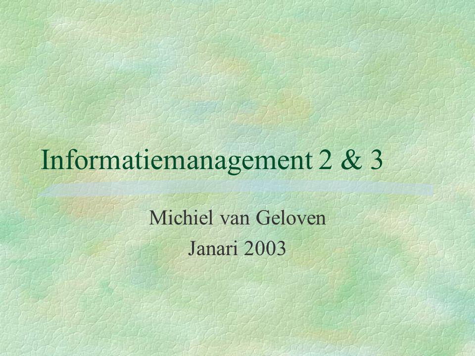 Informatiemanagement 2 & 3 Michiel van Geloven Janari 2003