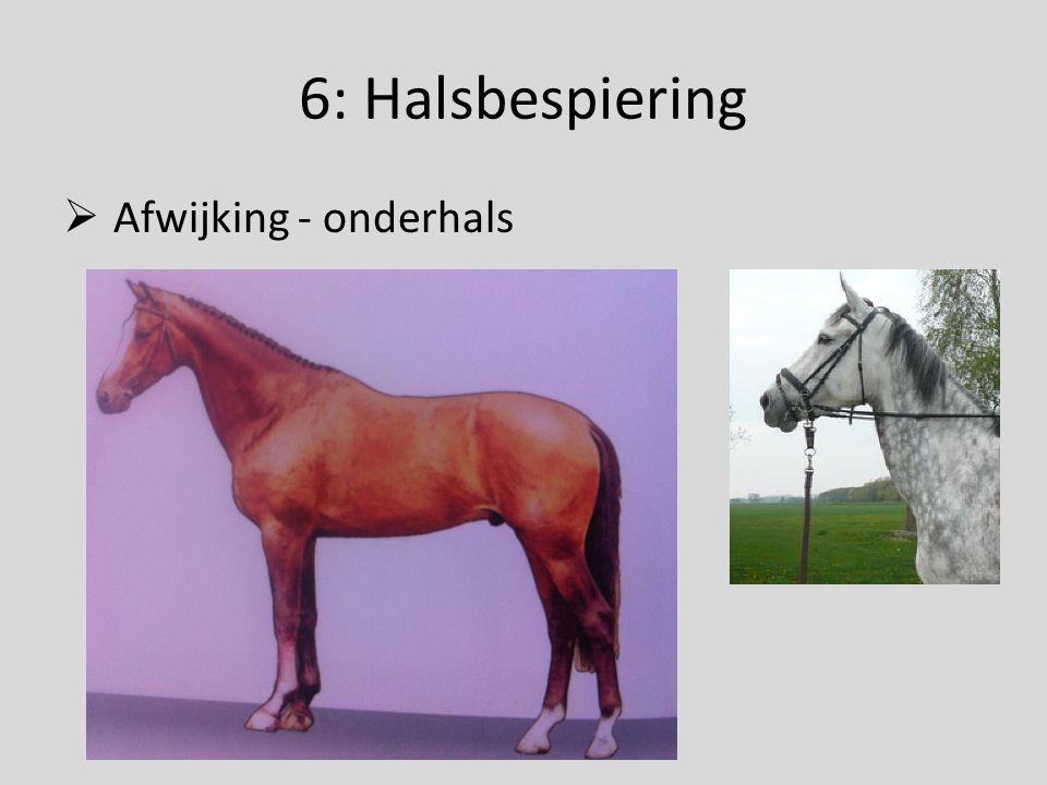 6: Halsbespiering  Afwijking - onderhals