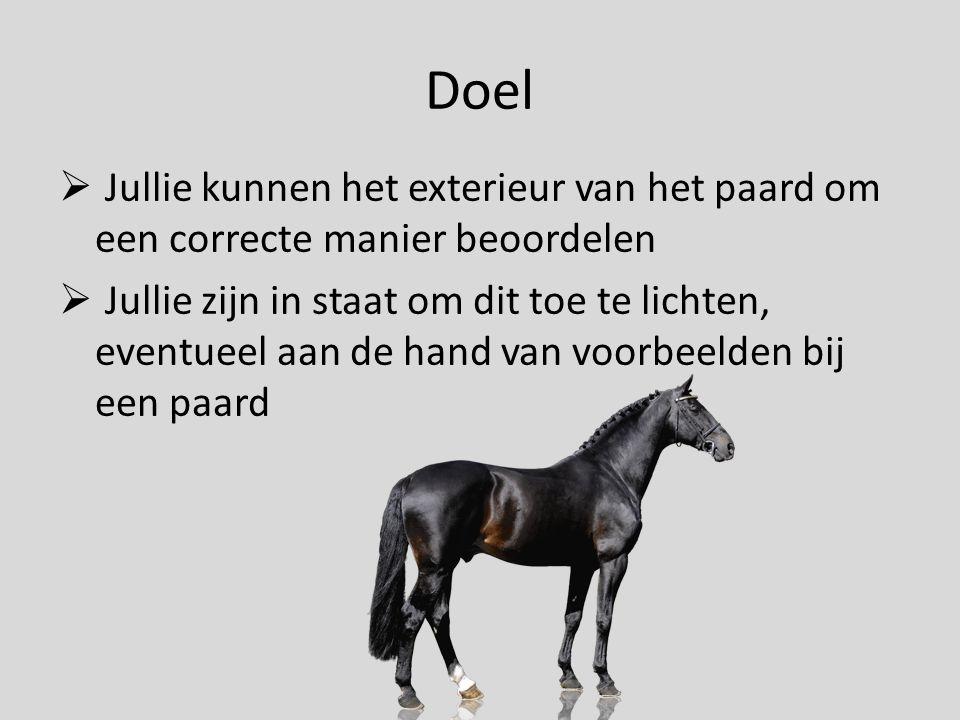 Doel  Jullie kunnen het exterieur van het paard om een correcte manier beoordelen  Jullie zijn in staat om dit toe te lichten, eventueel aan de hand