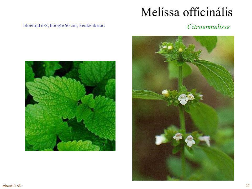 Melíssa officinális inhoud: 2 22 bloeitijd 6-8; hoogte 60 cm; keukenkruid Citroenmelisse
