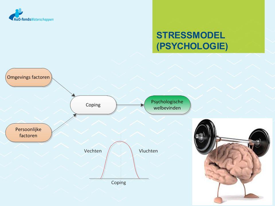 STRESSMODEL (PSYCHOLOGIE)