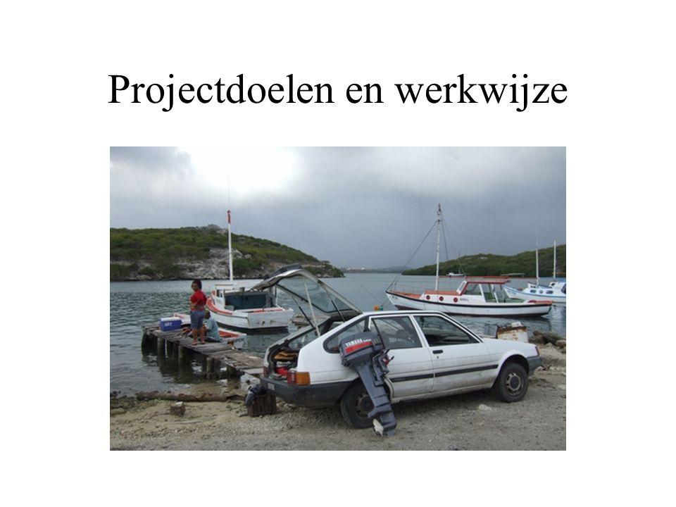 Projectdoelen en werkwijze