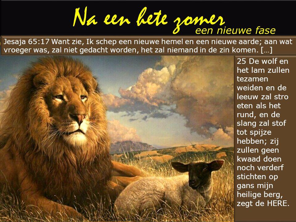 Na een hete zomer een nieuwe fase 25 De wolf en het lam zullen tezamen weiden en de leeuw zal stro eten als het rund, en de slang zal stof tot spijze