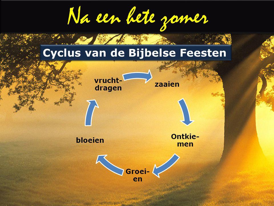 zaaien Ontkie- men Groei- en bloeien vrucht- dragen Cyclus van de Bijbelse Feesten