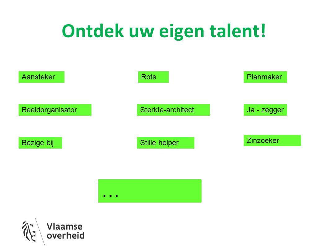 Ontdek uw eigen talent! Aansteker Beeldorganisator Bezige bij Rots Sterkte-architect Planmaker Stille helper Zinzoeker … Ja - zegger