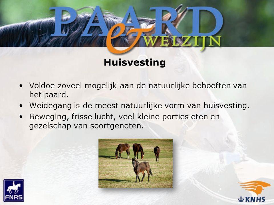 Voldoe zoveel mogelijk aan de natuurlijke behoeften van het paard. Weidegang is de meest natuurlijke vorm van huisvesting. Beweging, frisse lucht, vee