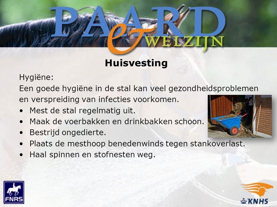 Huisvesting Hygiëne: Een goede hygiëne in de stal kan veel gezondheidsproblemen en verspreiding van infecties voorkomen. Mest de stal regelmatig uit.