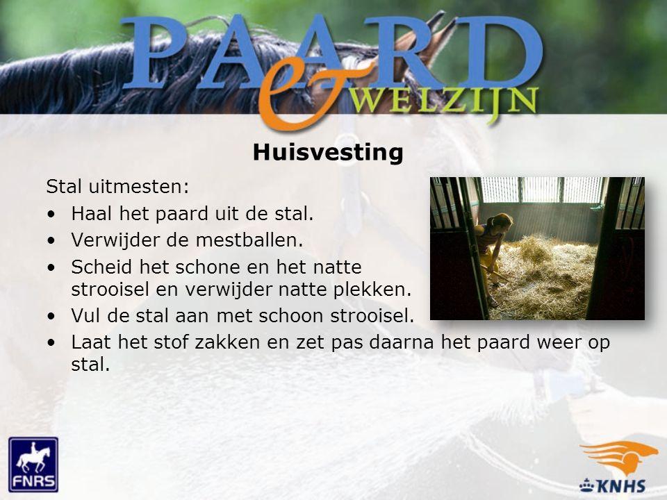 Huisvesting Stal uitmesten: Haal het paard uit de stal. Verwijder de mestballen. Scheid het schone en het natte strooisel en verwijder natte plekken.