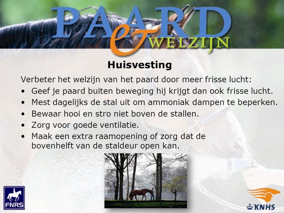 Huisvesting Verbeter het welzijn van het paard door meer frisse lucht: Geef je paard buiten beweging hij krijgt dan ook frisse lucht. Mest dagelijks d