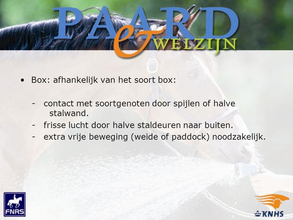 Box: afhankelijk van het soort box: - contact met soortgenoten door spijlen of halve stalwand. - frisse lucht door halve staldeuren naar buiten. - ext
