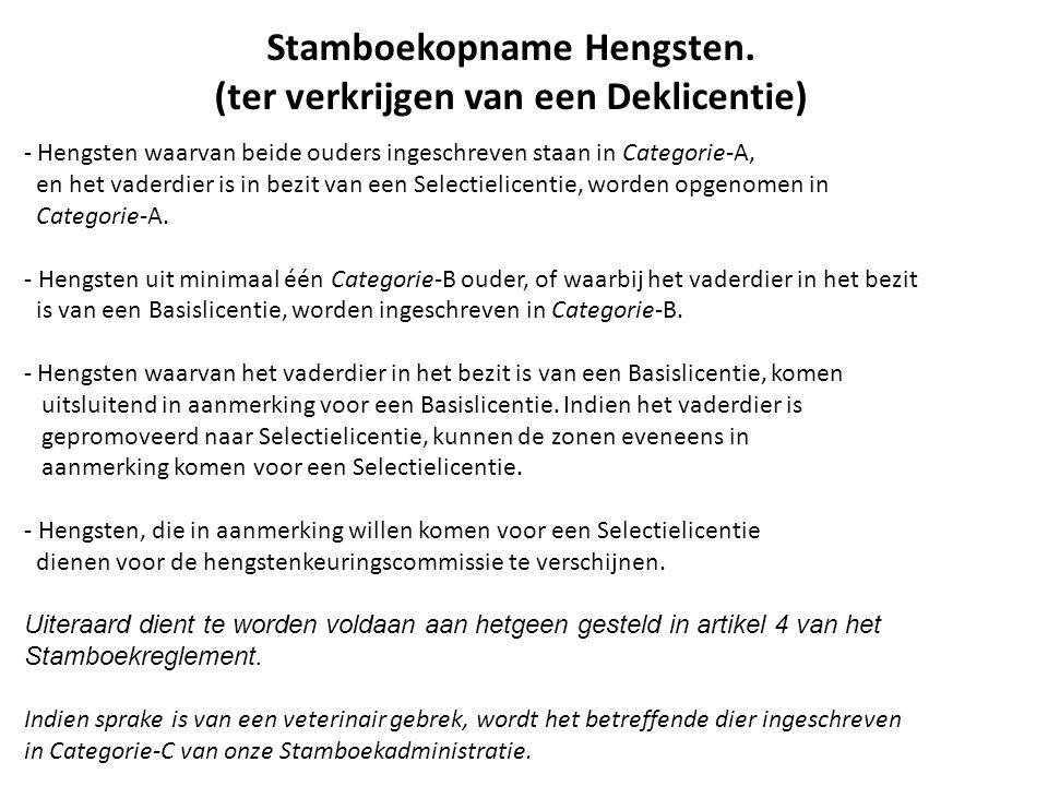 Stamboekopname Hengsten.