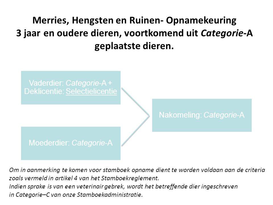 Merries, Hengsten en Ruinen- Opnamekeuring 3 jaar en oudere dieren, voortkomend uit Categorie-A geplaatste dieren.