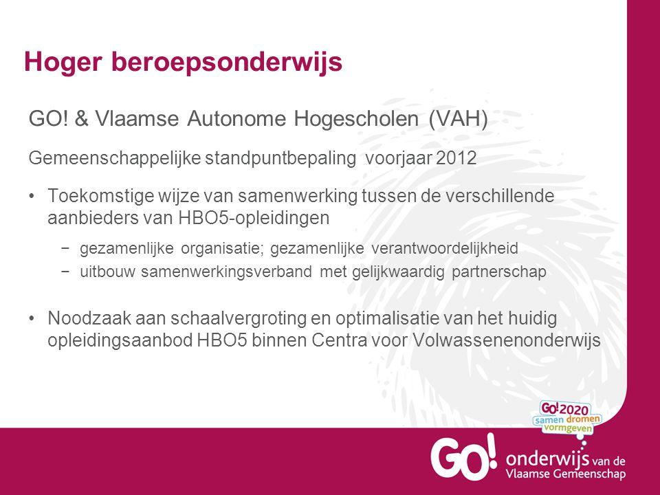 Hoger beroepsonderwijs GO! & Vlaamse Autonome Hogescholen (VAH) Gemeenschappelijke standpuntbepaling voorjaar 2012 Toekomstige wijze van samenwerking