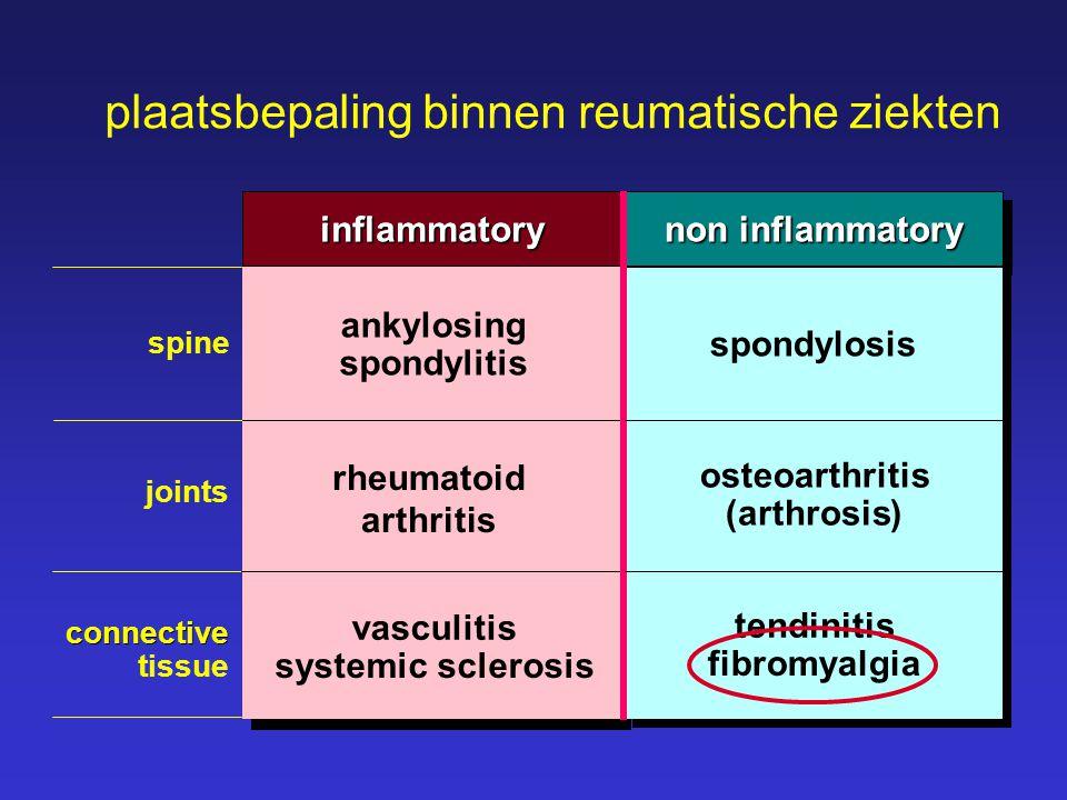 plaatsbepaling binnen reumatische ziekten spine joints connective tissue inflammatory ankylosing spondylitis ankylosing spondylitis arthritis rheumato