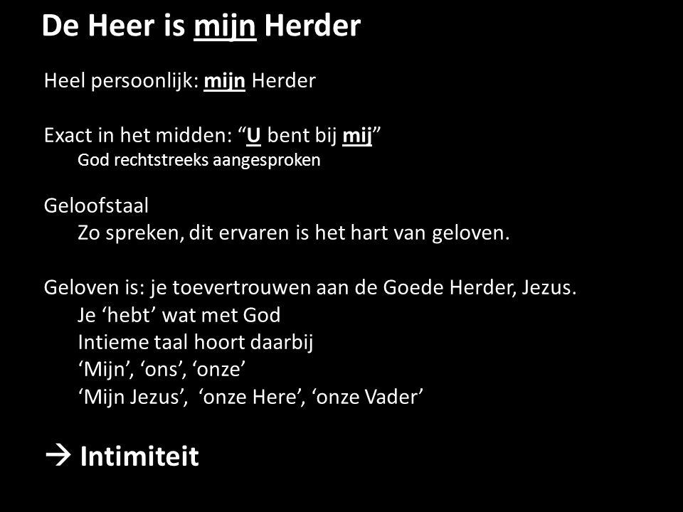 De Heer is mijn Herder Heel persoonlijk: mijn Herder Exact in het midden: U bent bij mij God rechtstreeks aangesproken Geloofstaal Zo spreken, dit ervaren is het hart van geloven.