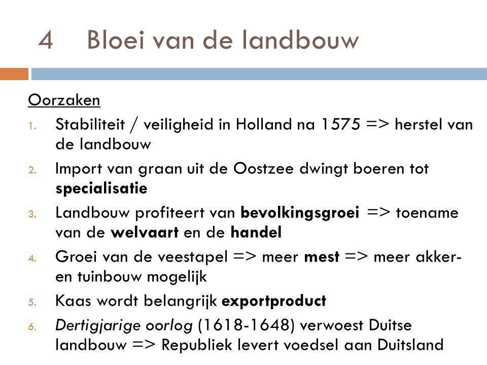 4 Bloei van de landbouw Oorzaken 1. Stabiliteit / veiligheid in Holland na 1575 => herstel van de landbouw 2. Import van graan uit de Oostzee dwingt b