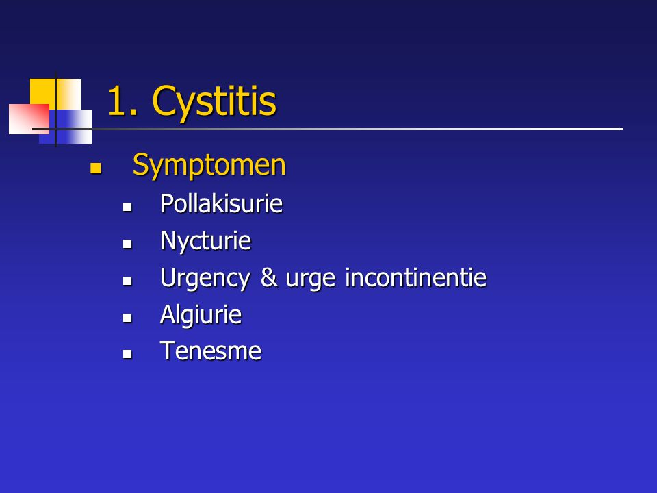 1. Cystitis Symptomen Symptomen Pollakisurie Pollakisurie Nycturie Nycturie Urgency & urge incontinentie Urgency & urge incontinentie Algiurie Algiuri