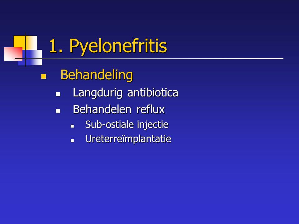 1. Pyelonefritis Behandeling Behandeling Langdurig antibiotica Langdurig antibiotica Behandelen reflux Behandelen reflux Sub-ostiale injectie Sub-osti