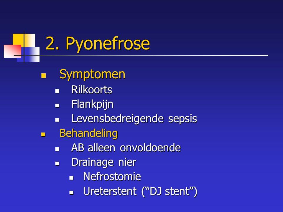 2. Pyonefrose Symptomen Symptomen Rilkoorts Rilkoorts Flankpijn Flankpijn Levensbedreigende sepsis Levensbedreigende sepsis Behandeling Behandeling AB