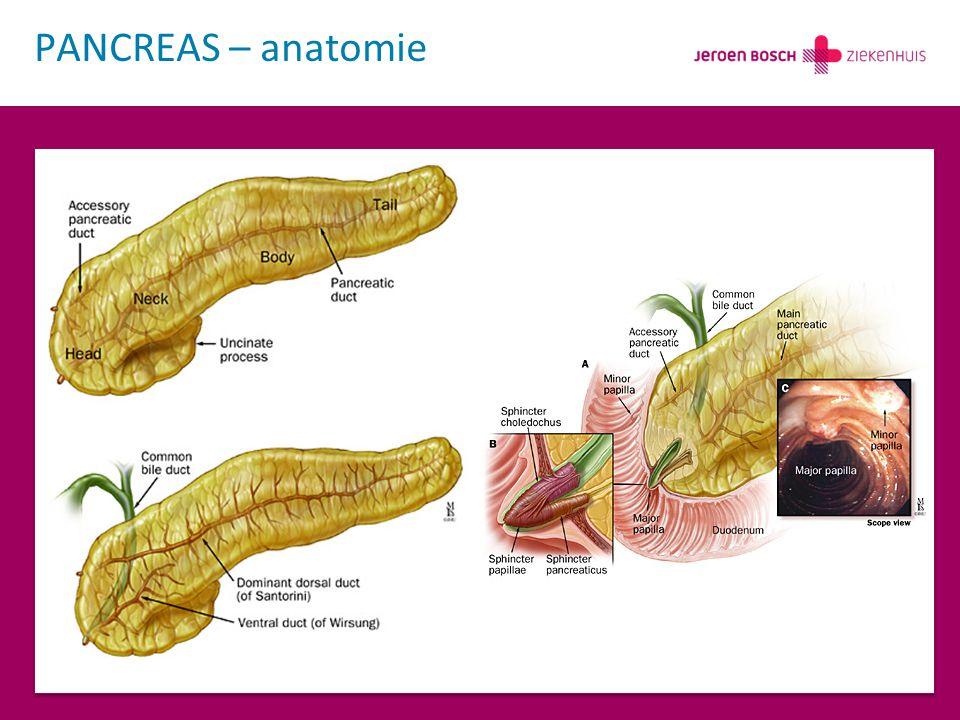 Oncologische uitkomst Pancreaschirurgie 2013 R0 resecties R1 resecties R2 resecties 21 (88%) 1 (4%) 2 (8%) Follow up11 mnd Adjuvante chemotherapie Overleving na chemotherapie Met chemotherapie Zonder chemotherapie 50% 66% 12.5 mnd 9.5 mnd Mortaliteit binnen follow up38% Tijd tot overlijden Relatie primaire proces 8.5 mnd (2 – 15 mnd) 100% 1x niet-curatieve resectie 2x lokaal recidief 5 metastasen