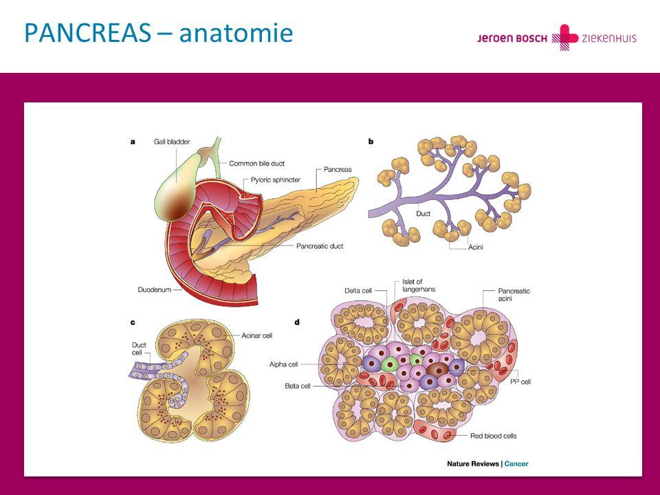 PANCREAS – carcinoom