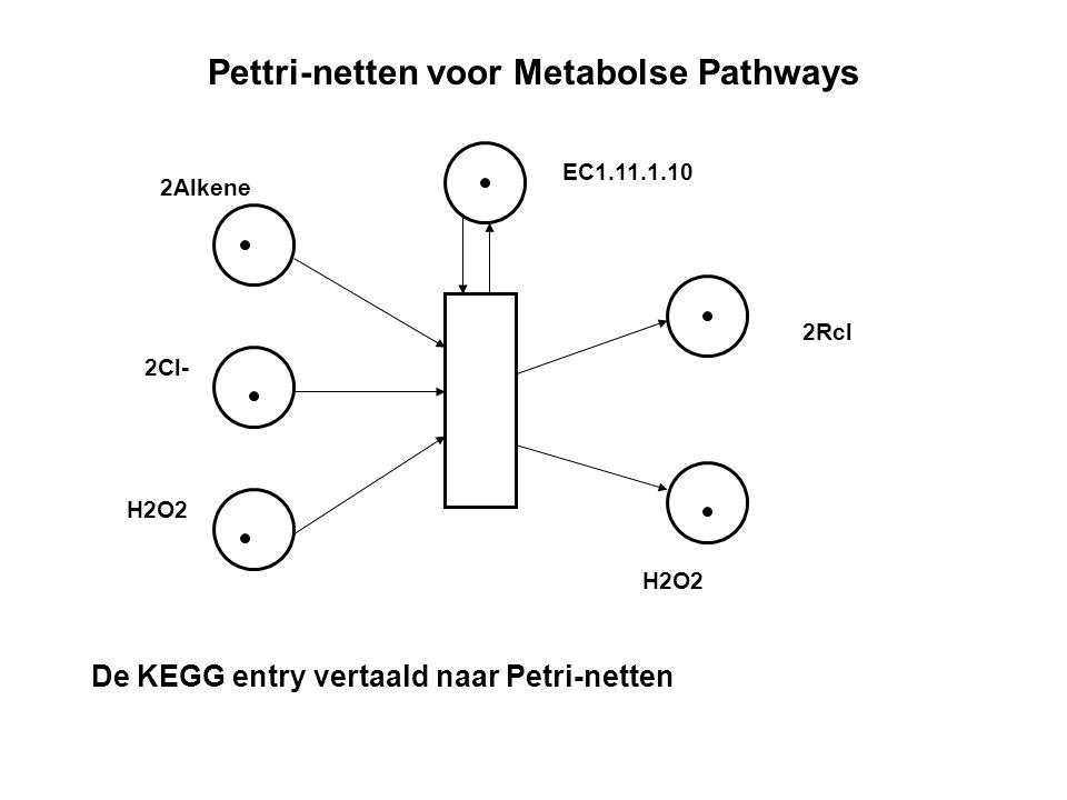 Pettri-netten voor Metabolse Pathways 2Alkene 2Cl- H2O2 2Rcl EC1.11.1.10 De KEGG entry vertaald naar Petri-netten