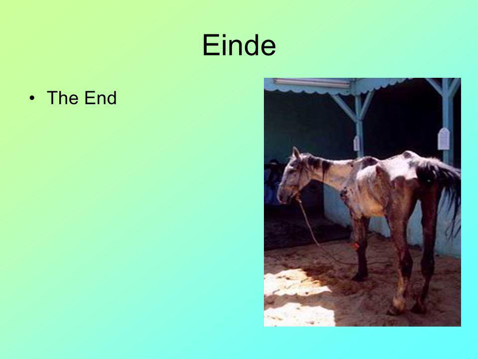 Einde The End