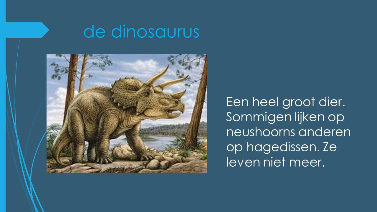 de dinosaurus Een heel groot dier. Sommigen lijken op neushoorns anderen op hagedissen. Ze leven niet meer.