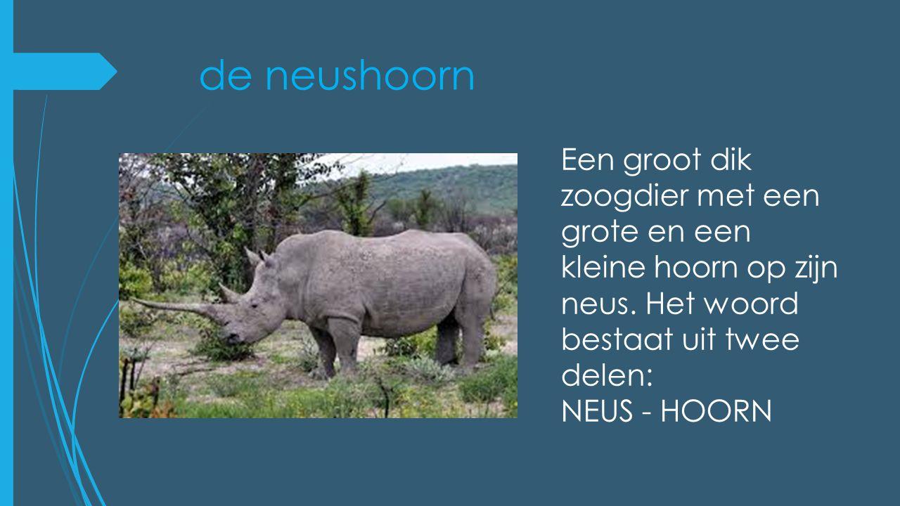 de neushoorn Een groot dik zoogdier met een grote en een kleine hoorn op zijn neus. Het woord bestaat uit twee delen: NEUS - HOORN