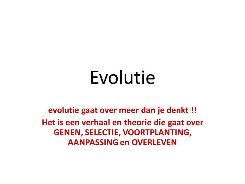 Evolutie evolutie gaat over meer dan je denkt !.