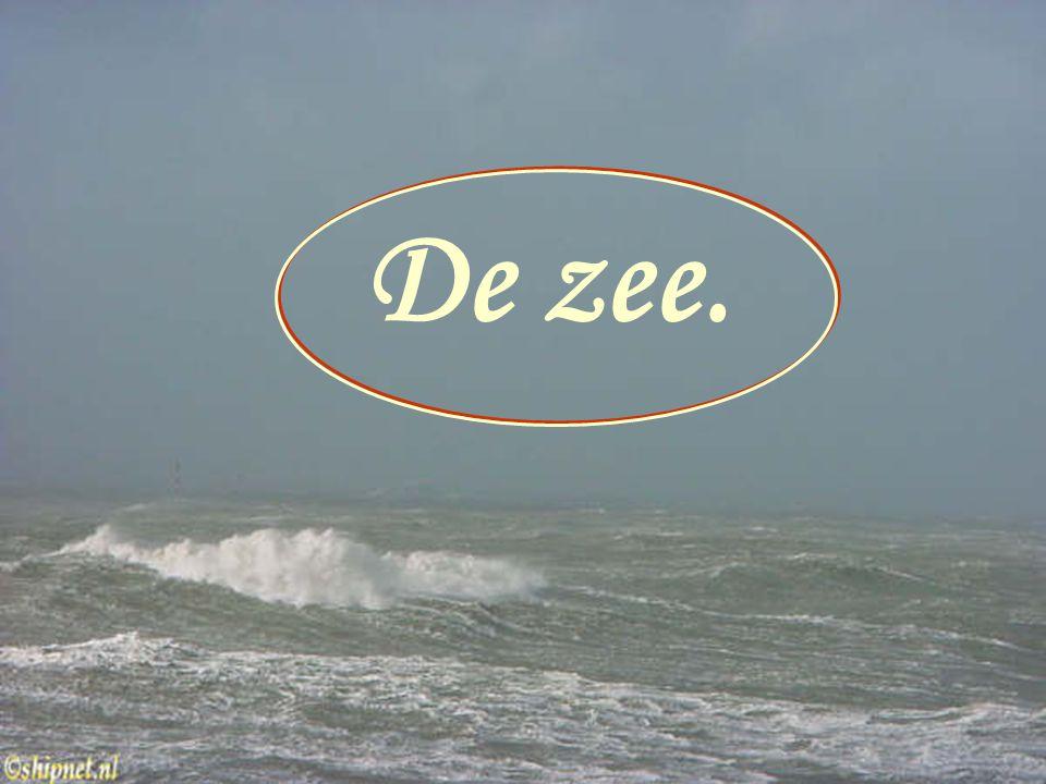 De zee. De zee.