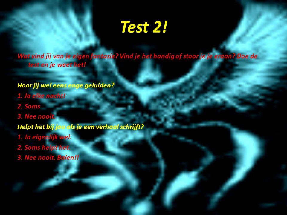 Test 2.Wat vind jij van je eigen fantasie. Vind je het handig of stoor je je eraan.