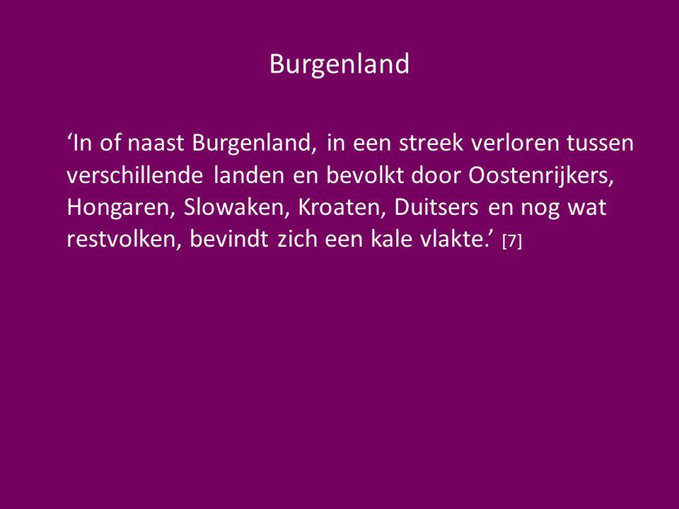 Burgenland 'In of naast Burgenland, in een streek verloren tussen verschillende landen en bevolkt door Oostenrijkers, Hongaren, Slowaken, Kroaten, Duitsers en nog wat restvolken, bevindt zich een kale vlakte.' [7]