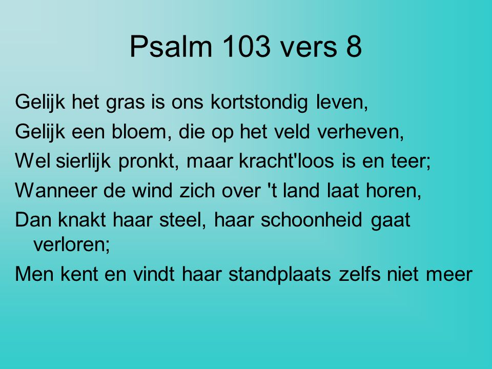 Psalm 103 vers 8 Gelijk het gras is ons kortstondig leven, Gelijk een bloem, die op het veld verheven, Wel sierlijk pronkt, maar kracht'loos is en tee