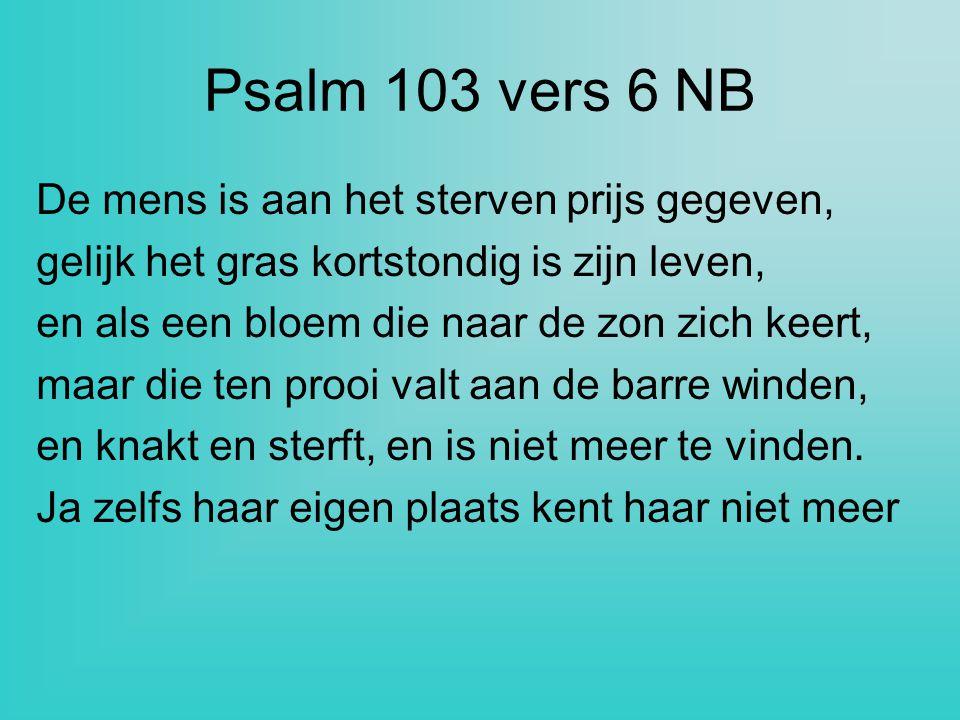 Psalm 103 vers 6 NB De mens is aan het sterven prijs gegeven, gelijk het gras kortstondig is zijn leven, en als een bloem die naar de zon zich keert,