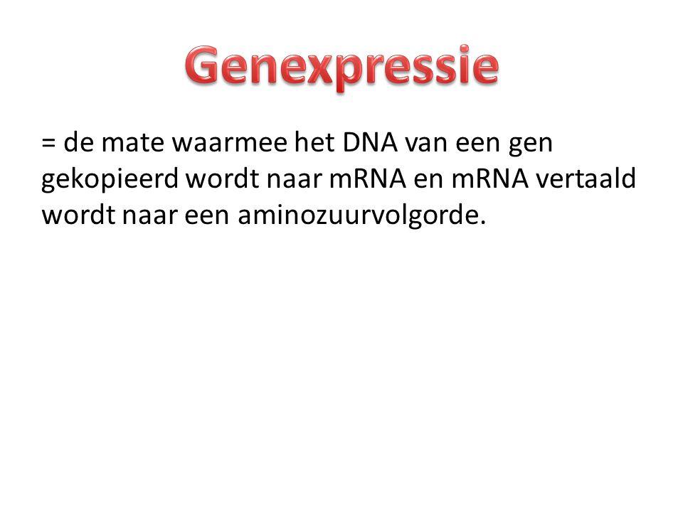 = de mate waarmee het DNA van een gen gekopieerd wordt naar mRNA en mRNA vertaald wordt naar een aminozuurvolgorde.