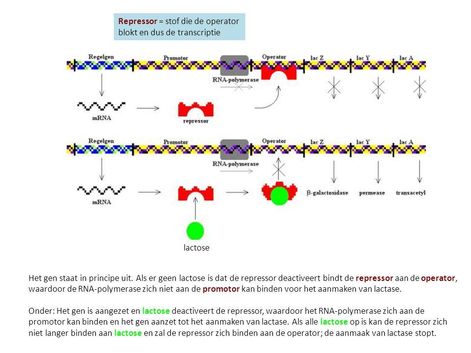 Eukaryoten kunnen op meerdere manieren de expressie regelen.