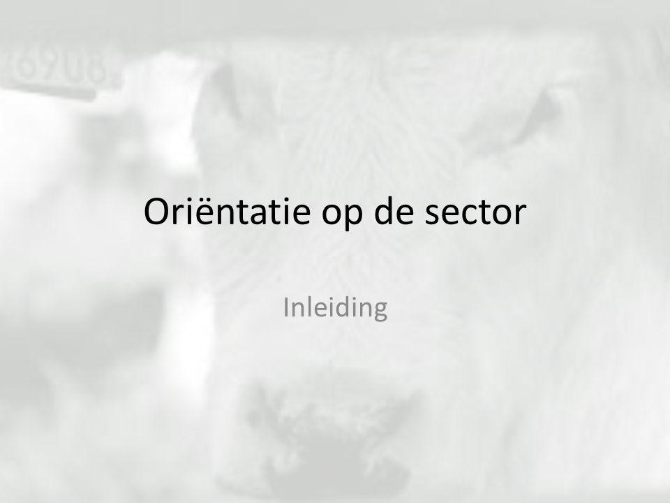 Oriëntatie op de sector Inleiding