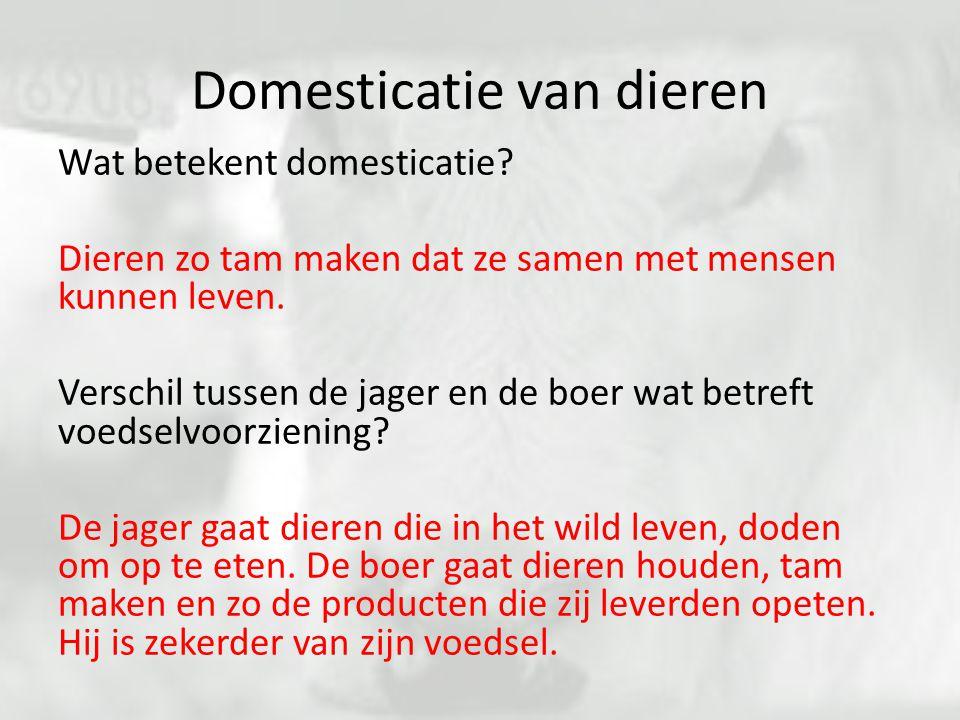 Domesticatie van dieren Wat betekent domesticatie? Dieren zo tam maken dat ze samen met mensen kunnen leven. Verschil tussen de jager en de boer wat b