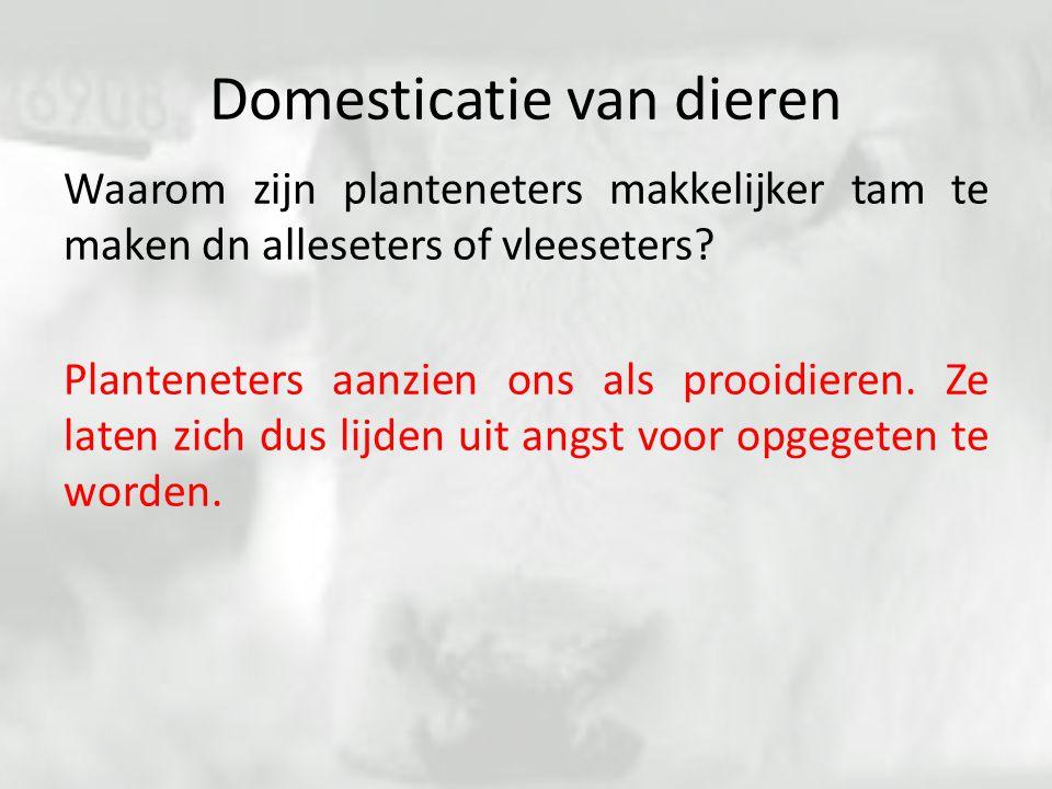 Domesticatie van dieren Waarom zijn planteneters makkelijker tam te maken dn alleseters of vleeseters? Planteneters aanzien ons als prooidieren. Ze la