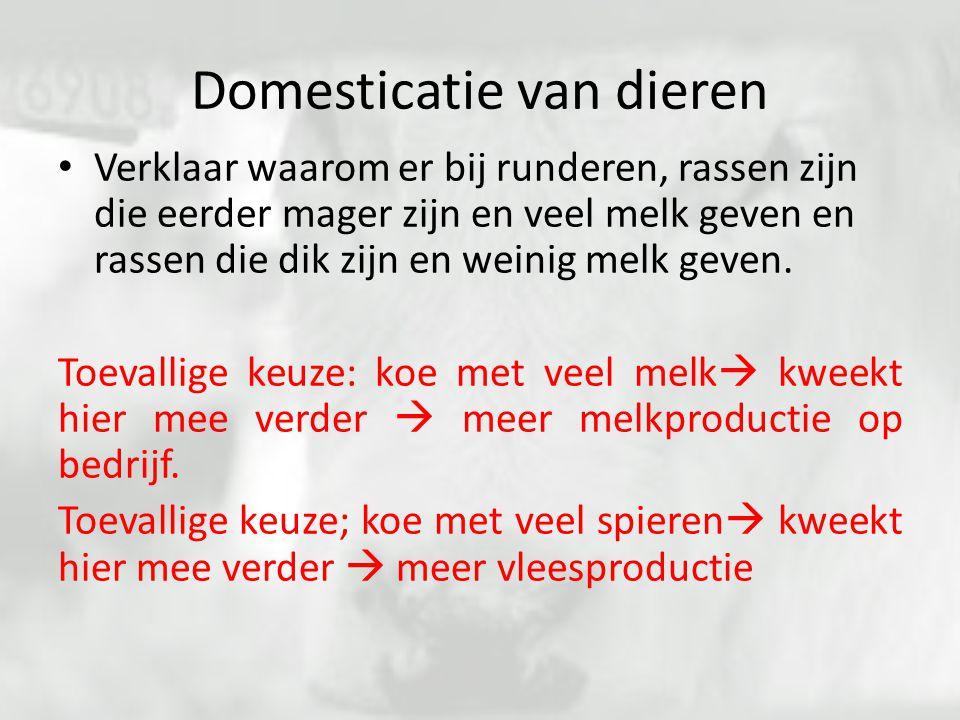 Domesticatie van dieren Verklaar waarom er bij runderen, rassen zijn die eerder mager zijn en veel melk geven en rassen die dik zijn en weinig melk ge