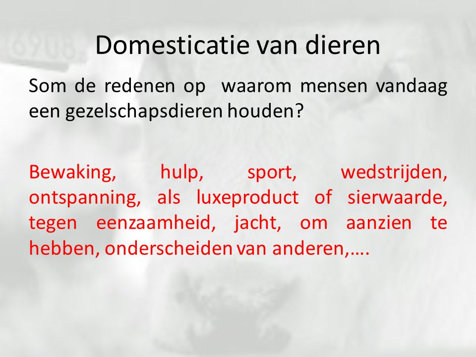 Domesticatie van dieren Som de redenen op waarom mensen vandaag een gezelschapsdieren houden? Bewaking, hulp, sport, wedstrijden, ontspanning, als lux